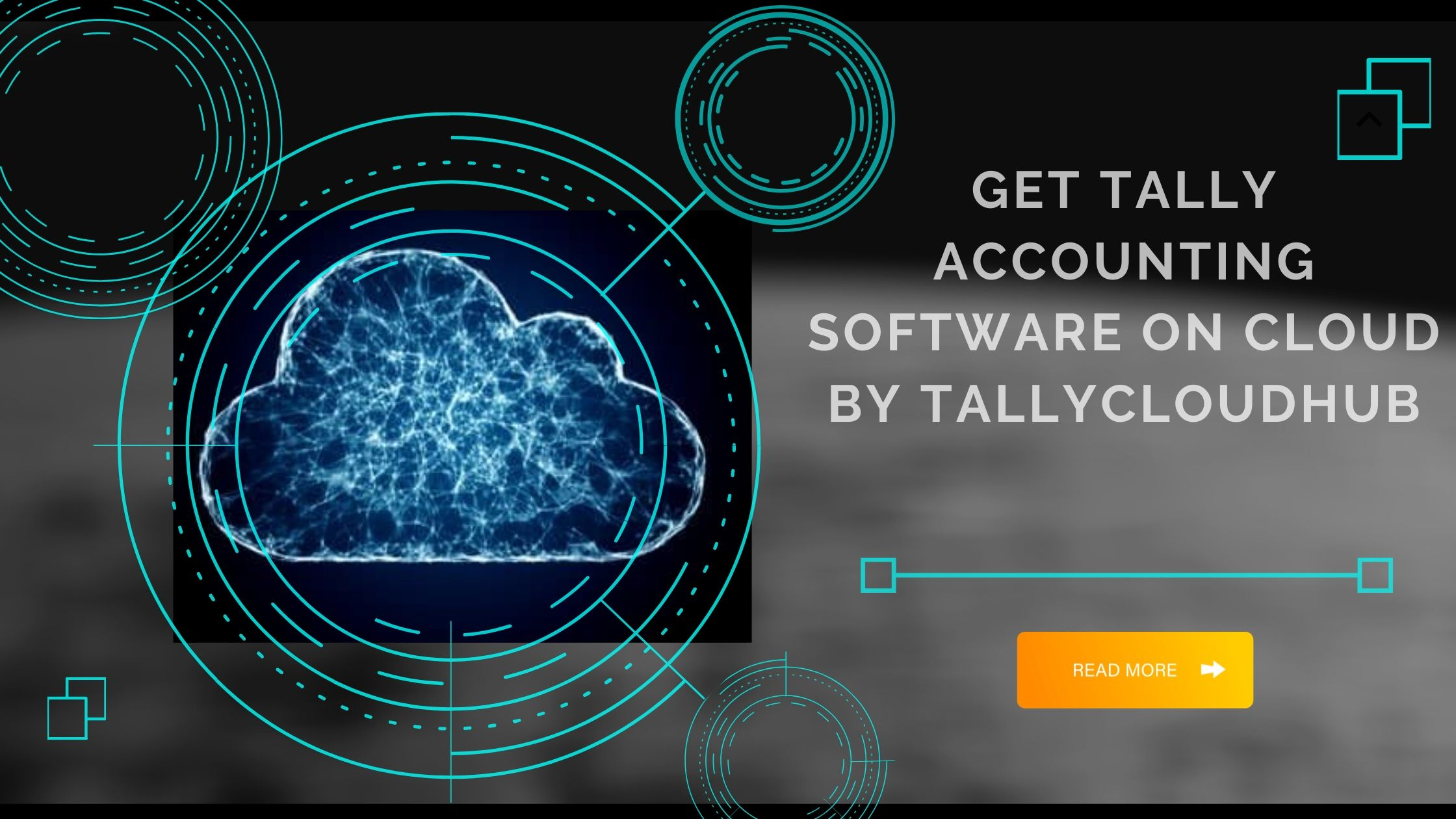 Tally Accounting Software on cloud by TallyCloudHub