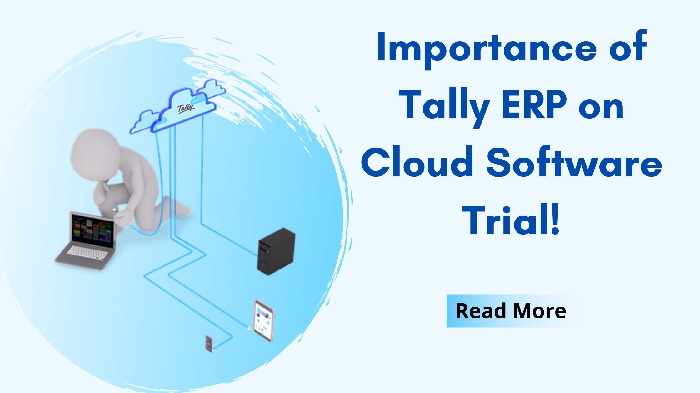 Tally on cloud demo importance