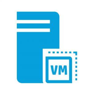 Tally VM Server