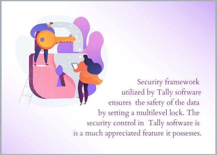 tally security framework