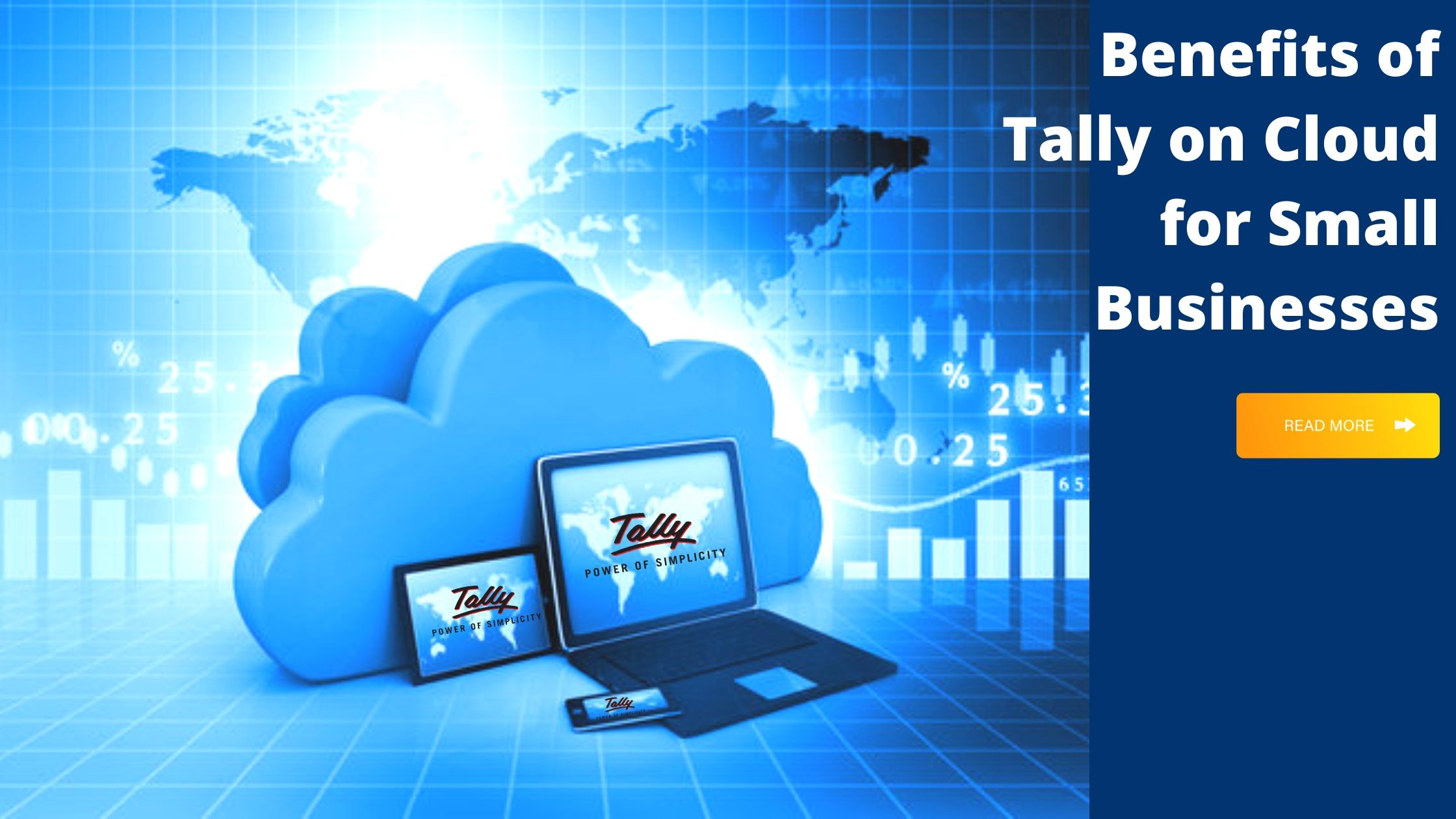 Tally on Cloud for Small Businesses